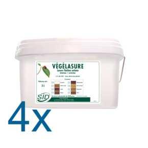 Vegelasure_COMPOSANTS4_tif.jpg